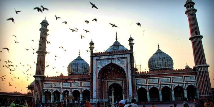 Delhi Darshan